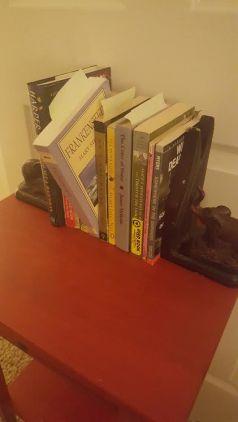 CTS blog_novel study I